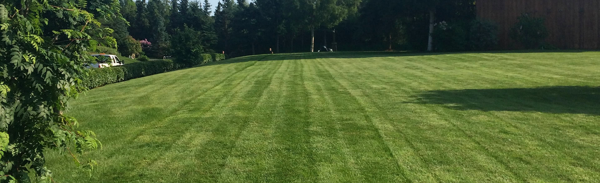 anchorage-lawn-mowing